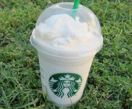 teddy graham frappuccino