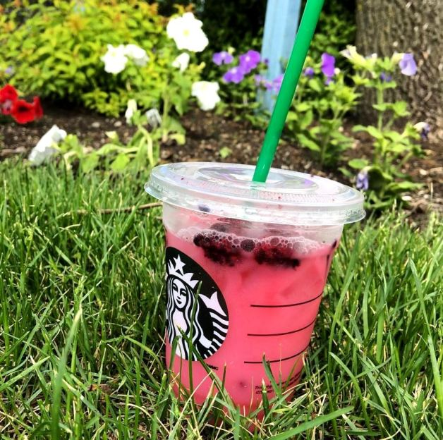 starbucks secret menu pink drink