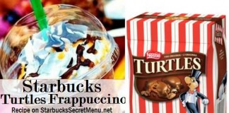 starbucks-turtles-frappuccino