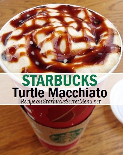 turtle macchiato
