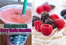 Starbucks Berry Vanilla Smoothie